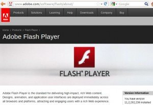 adobe flash update check